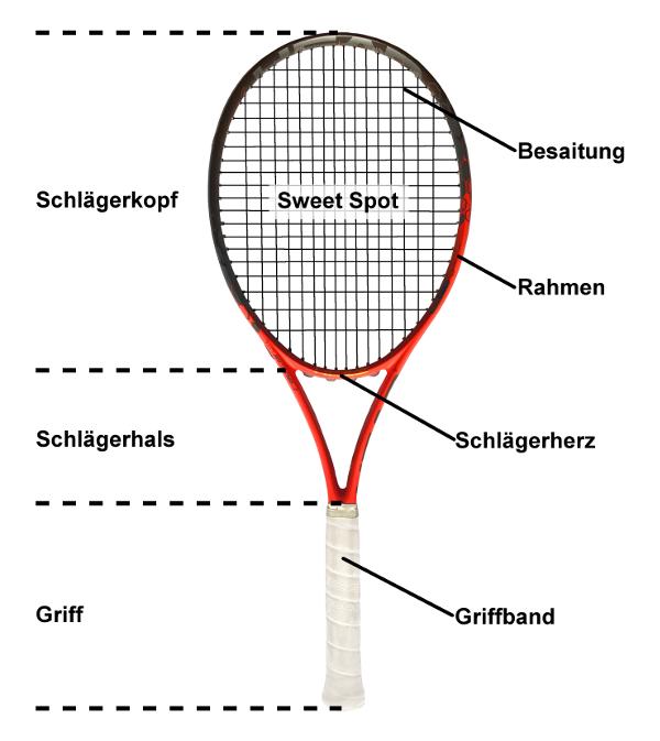 Grafik vom Aufbau eines Tennisschlägers
